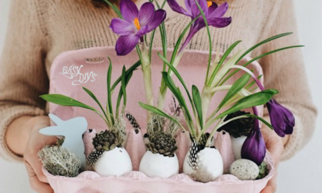 DIY Eggshell Planters Craft